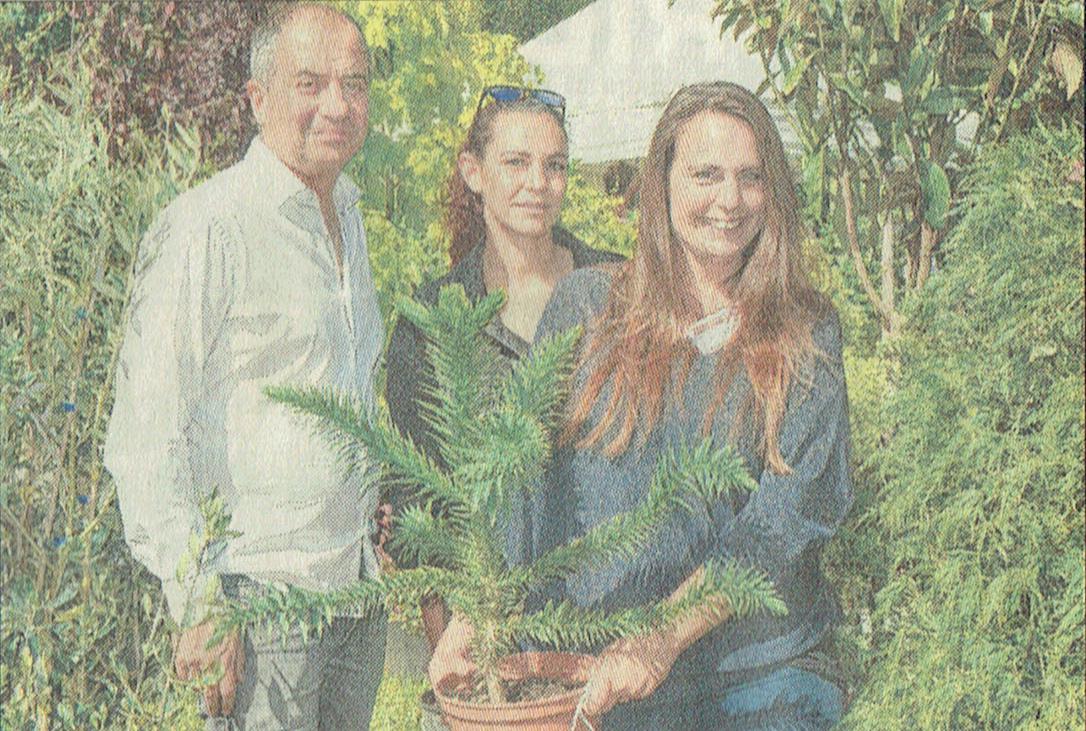 Où dénicher arbres et arbustes, rares et précieux